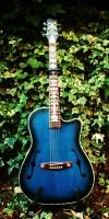 acoustic (1)
